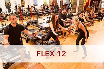 FLEX 12