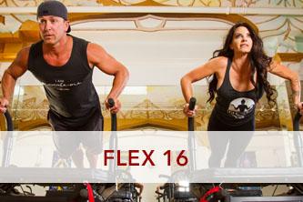 FLEX 16